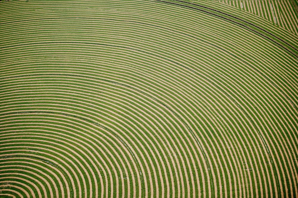 Circular Alfalfa Farm